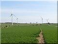 NZ3931 : Path through Butterwick Moor Wind Farm, near Sedgefield by Malc McDonald