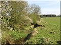 NZ3832 : Ditch near Sedgefield by Malc McDonald