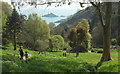 SX9150 : Coleton Fishacre garden by Derek Harper