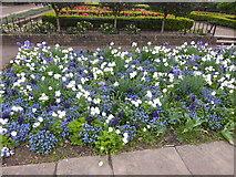 TQ2479 : The Napoleon Garden in Holland Park by Marathon