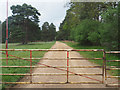 TL8295 : Gated Military road by David Pashley