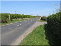 NZ3534 : West Lane, near Trimdon by Malc McDonald