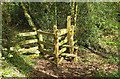 SX7873 : Stile, Goodstone Woods by Derek Harper