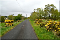 H5073 : Comber Road, Ballynamullan by Kenneth  Allen