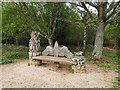 TQ2433 : Bench in Buchan Country Park by PAUL FARMER