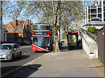 TQ2878 : 11 bus at Victoria Coach Station stop by Robin Webster