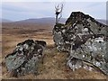 NN3960 : Moorland boulder and tree north of Meall Liath na Doire by wrobison