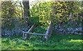 NO4203 : Walled Garden, Largo House by Bill Kasman