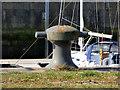 NS2975 : Bollard at James Watt Dock by Thomas Nugent