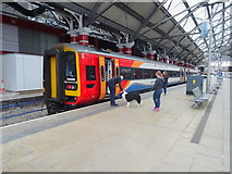 SJ3590 : Liverpool Lime Street Railway Station by JThomas
