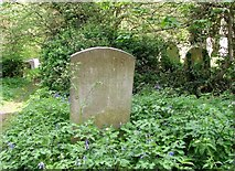 TG2408 : The grave of Thomas Martineau by Evelyn Simak