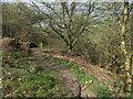 SE0051 : Footpath alongside Jenny GIll by Stephen Craven