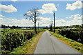 H4975 : Crosh Road, Crosh by Kenneth  Allen