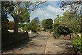ST4317 : North Street, South Petherton by Derek Harper