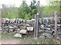 NU0403 : Unusual stile into woodland on Chapel Hill by Geoff Holland