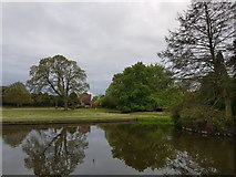 SE6250 : Derwent Lawns across the lake by DS Pugh