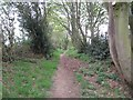 NZ0664 : Bridleway towards Hollyhurst by Les Hull