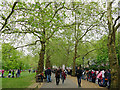 TQ2979 : Marathon spectators in St James's Park by Stephen Craven