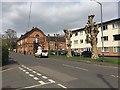 SP2965 : Pollarded plane trees, Charles Street, Warwick by Robin Stott