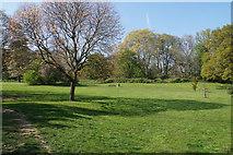 SP2865 : Priory Park by Bill Boaden