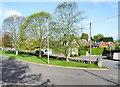 NT2539 : Trees on south side of Springwood Road by Trevor Littlewood