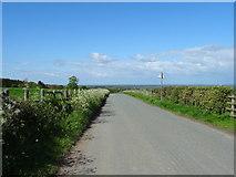 SJ3654 : Looking north east on Hoseley Lane by JThomas