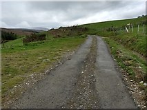 SJ0134 : Farm track with public access above the Afon Dinam by David Medcalf