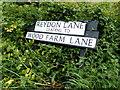 TM4878 : Reydon Lane & Wood Farm Lane signs by Adrian Cable