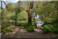 SS9128 : West Somerset : River Barle by Lewis Clarke