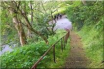 NT4935 : Footpath up from Huddersfield Street, Galashiels by Jim Barton