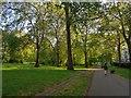 TQ2880 : Green Park by DS Pugh