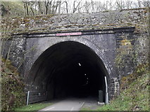 SK1273 : Chee Dale: entering Chee Tor Tunnel from the east by Chris Downer