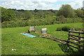 SS5726 : Grass field, Chapelton Cross by Derek Harper