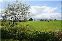 H4965 : Moylagh Townland by Kenneth  Allen
