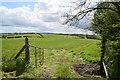 H5064 : An open field, Moylagh by Kenneth  Allen