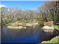 NG2657 : Mill pond at Waternish Farm by Richard Dorrell