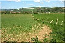 SS5726 : Farmland east of Hildrew by Derek Harper