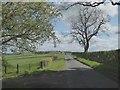 NY4272 : Country road at Lamb Hill by Oliver Dixon
