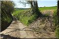 SS5527 : Lane to Sideham by Derek Harper