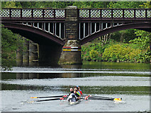 NS6162 : Dalmarnock railway bridge by Thomas Nugent