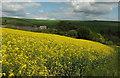 SX7546 : Longclose Farm, Goveton by Derek Harper