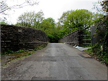 ST1599 : West across Angel Lane bridge, Gilfach by Jaggery