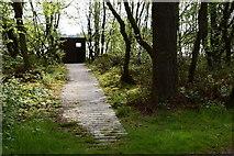 H5776 : Boarded walkway, Altdrumman by Kenneth  Allen