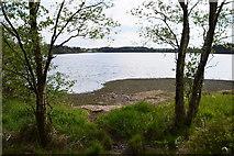 H5776 : Shore at Altdrumman by Kenneth  Allen