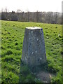 TQ7416 : Battle Hill Trig point by John P Reeves