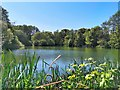 TQ8138 : Lake at Sissinghurst Castle Garden by PAUL FARMER