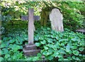 TG2408 : The grave of Daniel Shields by Evelyn Simak