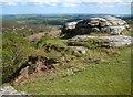 SX6971 : Dartmoor: Bench Tor (1) by Nigel Cox