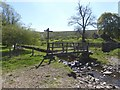 NY7638 : Footbridge over Clargill Burn by Oliver Dixon