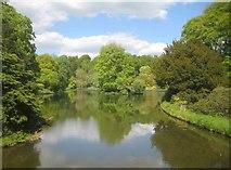 ST7733 : Stourton: Stourhead Gardens: Garden Lake by Nigel Cox